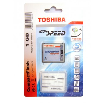 Toshiba 1024MB